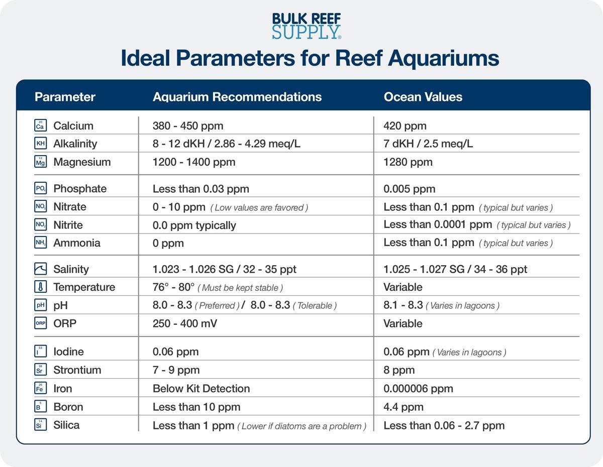 Aquarium Water Parameters Chart