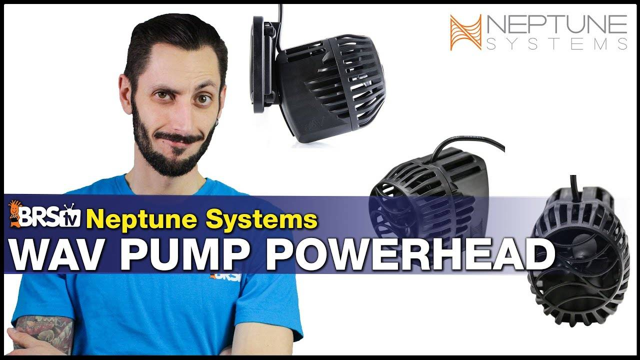 BRStv Product Spotlight - Neptune Systems WAV Pump