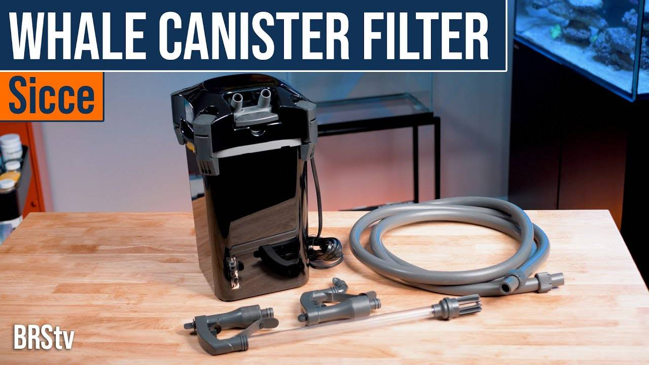 BRStv Product Spotlight Sicce Whale Canister Filters