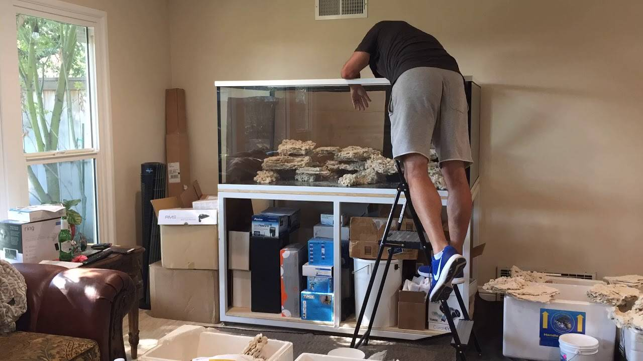 Reef Saver Foundation and Shelf Rock - Aquascaping with Joe from Unique Corals - Time Lapse 1