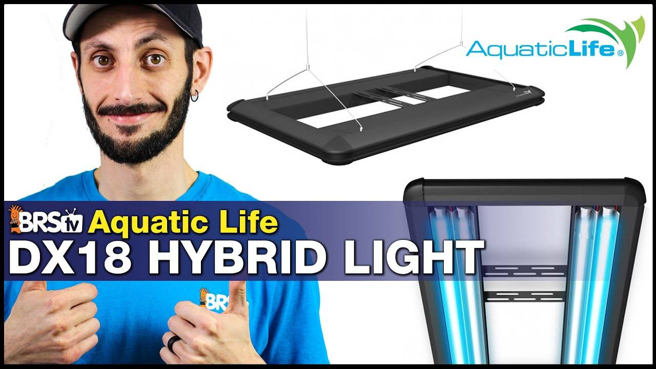 Aquatic Life Dimmable T5 Hybrid DX18: Step up your reef tank lighting game with proven results!
