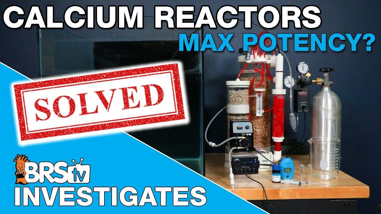 How does Calcium Reactor potency change at different pH points? ANSWER!  - BRStv Investigates