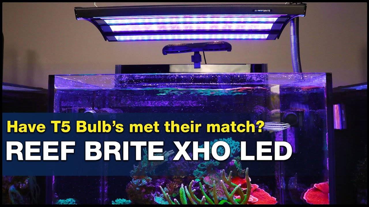 BRStv Investigates - Reef Brite XHO LED Strip Lights