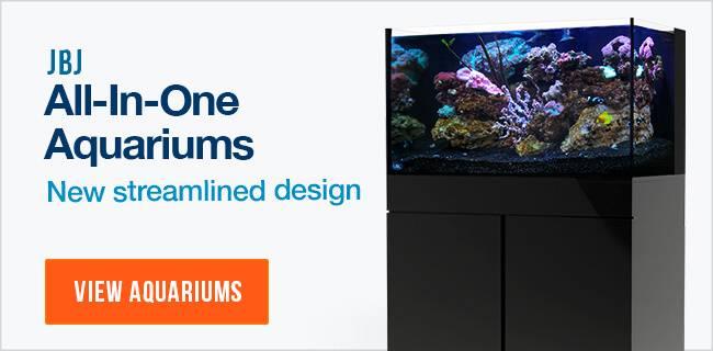 Shop JBJ Aquariums