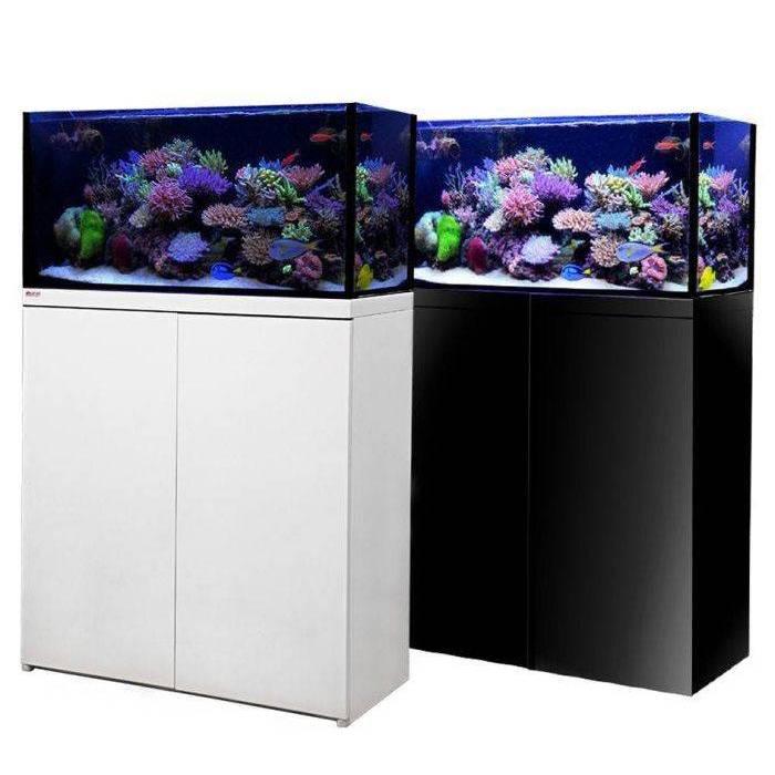 All Reef-Ready Aquariums